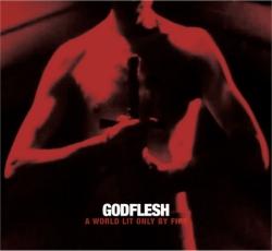 godflesh album